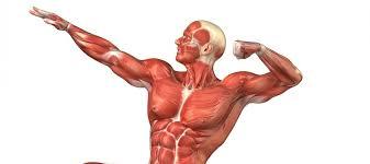 Meer controle óver je spieren in plaats van je spieren over jou